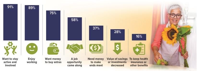 Working in Retirement Chart